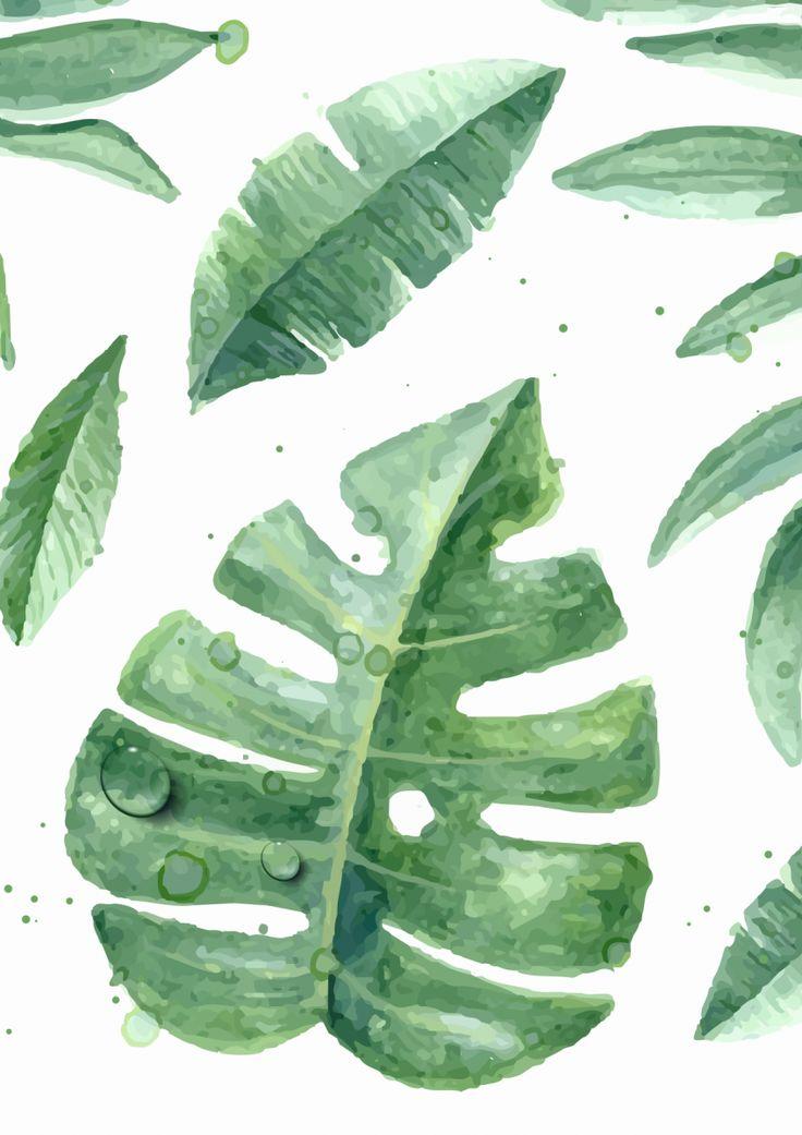 Já há algum tempo tenho notado uma mudança no maravilhoso mundo da decoração: Muita gente tem adotado plantas e deixado a casa mais verdinha. É bem verdade que elas deixam qualquer casa com cara de lar, dão vida e frescor à qualquer ambiente. E foi a partir desse novo amor que nasceu uma tendência: Os…