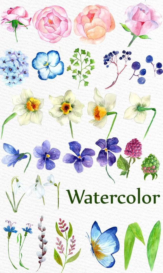 Watercolor Flowers Clipart Wedding Flowers Wedding Clip Art
