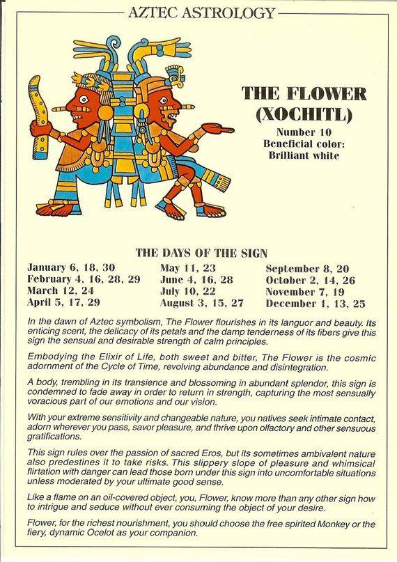 Vintage Aztec Astrology Postcard The Flower From Zodiac Unlimited Astrology Aztec Aztec Symbols