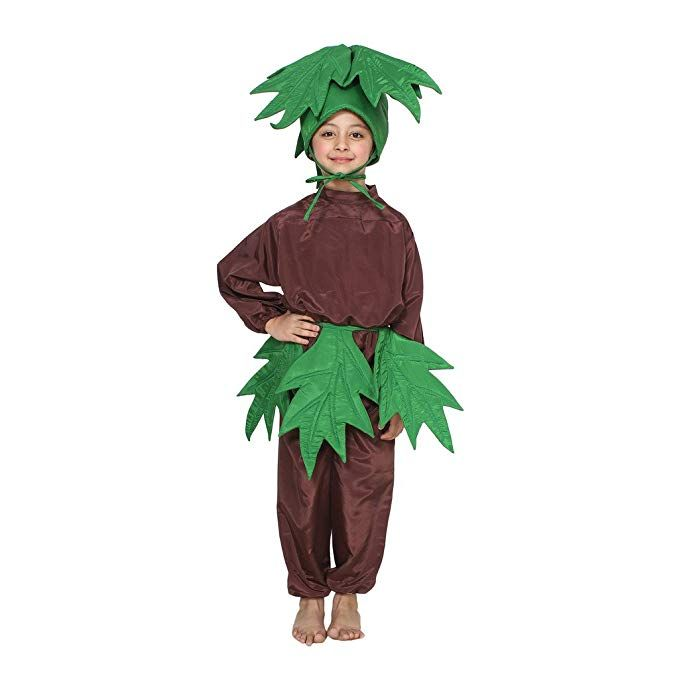 49++ Fancy dress competition on nature ideas