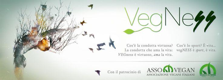 Cos'è VegNess - VegNess