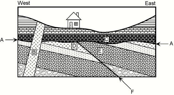 stratigraphy worksheet google search geology pinterest search and worksheets. Black Bedroom Furniture Sets. Home Design Ideas