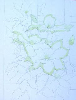 Ann Mortimer's Painting Blog: White Clematis on a trellis Stage 1