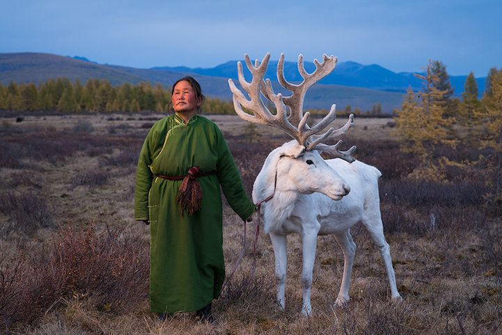 Photographer Documents Nomadic Community Co-Existing with Its Reindeer Family - My Modern Met