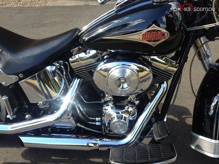 Harley Davidson Sotail  Logo