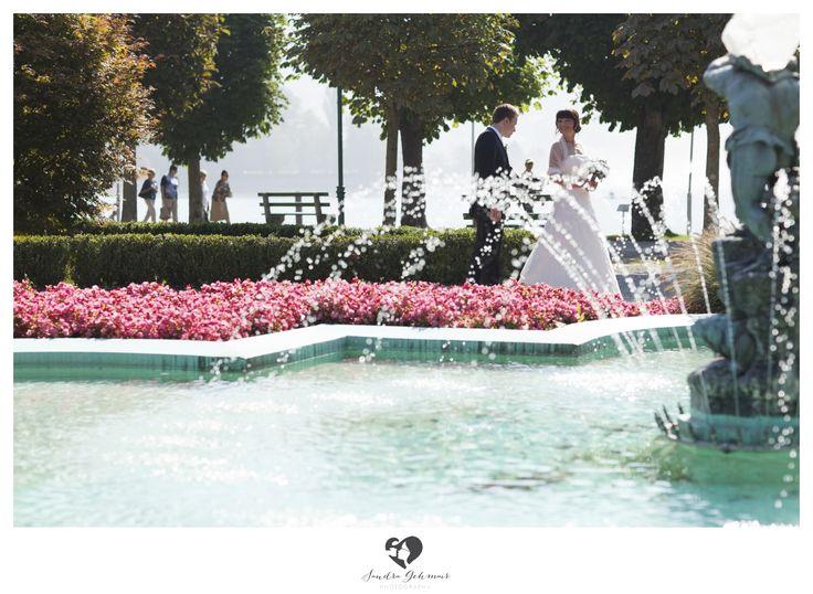 #outdoor #outdoorlocation #location #swan #schwan #schwaene #photography #fotografie #lake #traunsee #traunlake #reflection #schlossorth #seehotel #gmunden #linz #wels #steyr #groom #bride #braut #braeutigam #well #fountain #springbrunnen #blumen #roteblumen #flowers