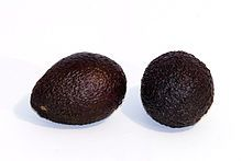 Hass Avocado. The Hass avocado is a cultivar of avocado with dark green-colored, bumpy skin. It was first grown and sold by Southern California mail carrier and amateur horticulturist Rudolph Hass, who also gave it his name.
