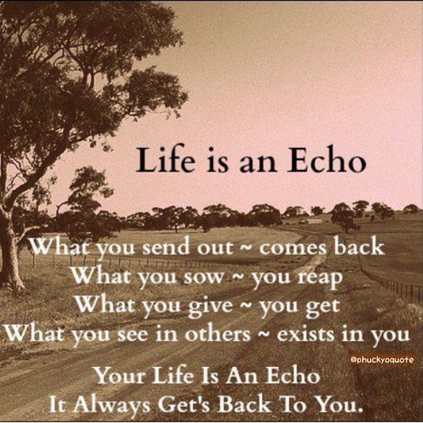 Life Is An Echo Life Quotes Quotes Positive Quotes Quote Life Quote Truth Wise  Quotes Instagram