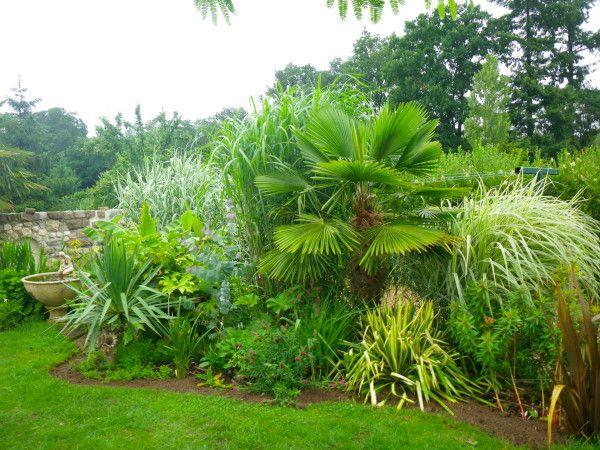 Le Blog Des Plantes Exotiques Rustiques Jardin Exotique Jardin Tropical Jardin Exterieur