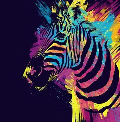 Zebra-Zebra Splatters