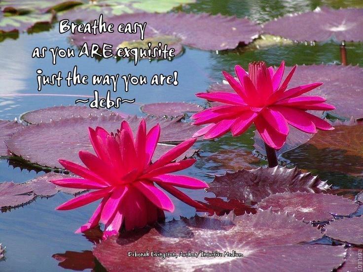 16 best fabulous flowers images on pinterest lotus flowers lotus httpauthordeblivthorsxpressfiles201208 lotus flowerspretty mightylinksfo