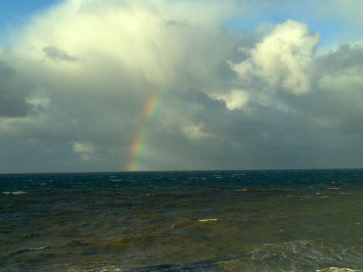 Rainbow ( Agon Coutainville - 50)