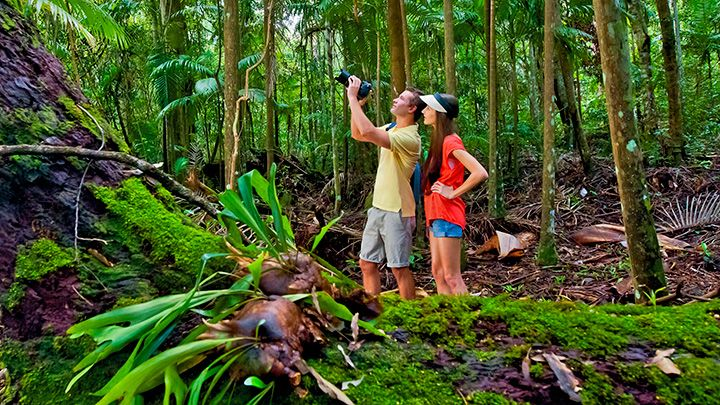 You'll be surprised and delighted by how many bush walking and hiking trails fall within a 30 minute drive of the city.