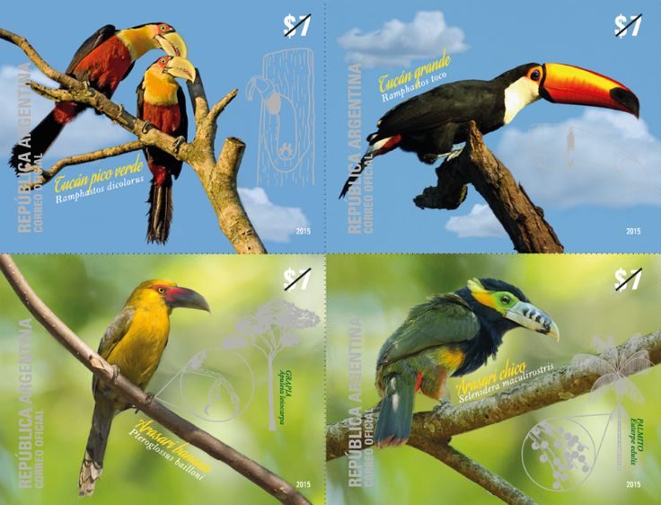 COLLECTORZPEDIA Toucans from Argentina