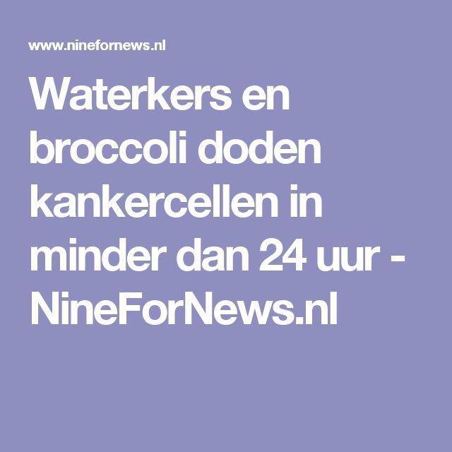 Waterkers en broccoli doden kankercellen in minder dan 24 uur - NineForNews.nl