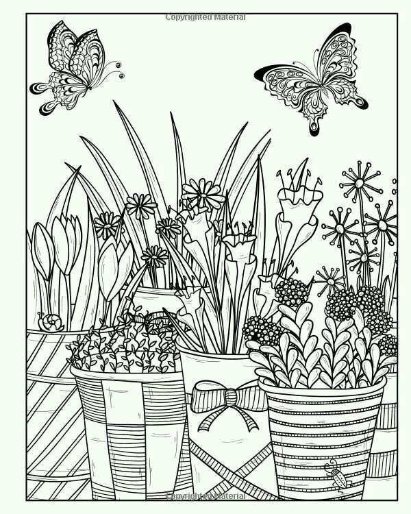 Enchanting English Garden An Inkcredible Scavenger Hunt And Coloring Book Paperback