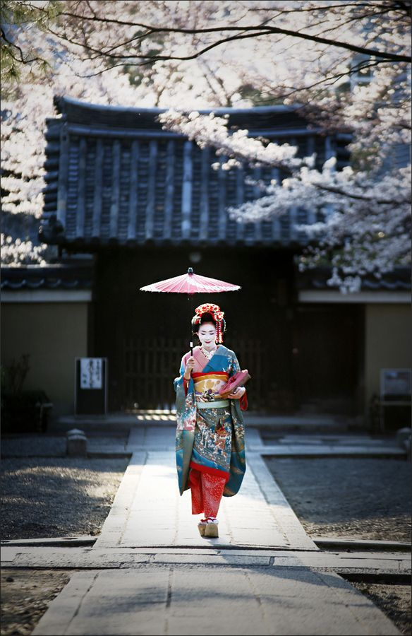 "Spring and Geisha...Geisha are traditional, female Japanese entertainers, whose skills include performing various Japanese arts,  such as classical music, dance and performance in front of customers.Apprentice geisha are called maiko. This word is made of mai in Japanese meaning ""dancing"" and ko in Japanese meaning ""child""....."