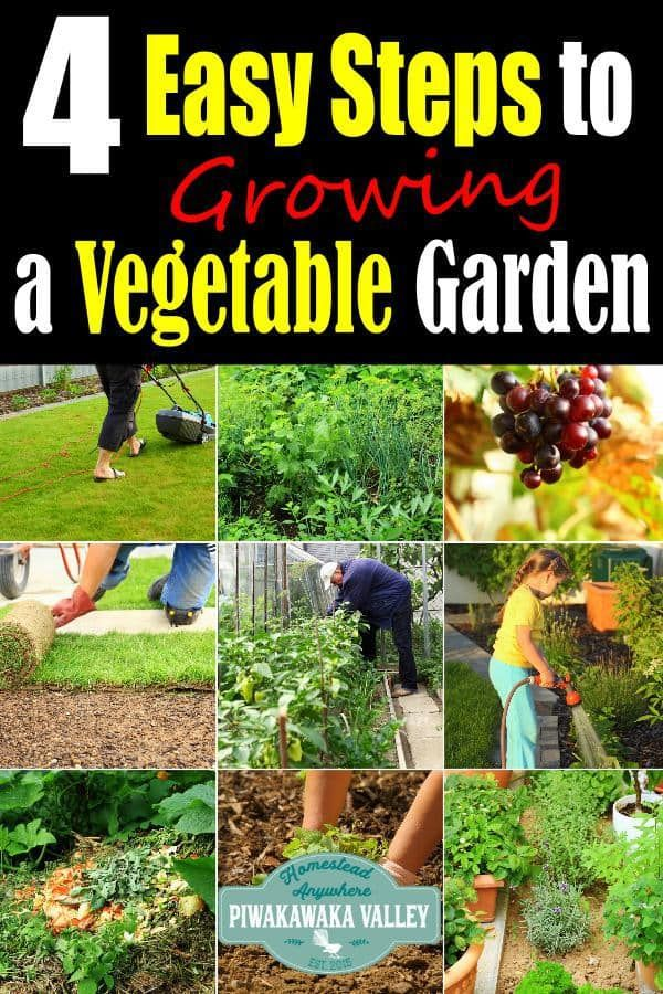 Pin On Vegetable Gardening Tips
