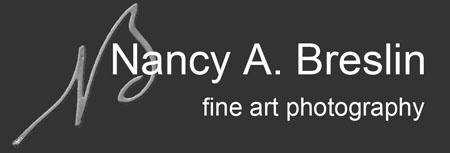Zero Image pinhole exposure tips from Nancy Breslin