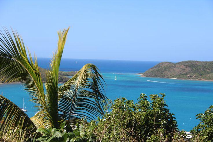 """Das pure Karibikfeeling genießen die Gäste von Meier's Weltreisen auf der neuen Katamarankreuzfahrt """"Inselträume al Gusto"""". Schaut Euch mal diesen Triptip an!"""