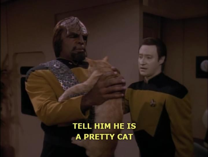 "Data: ""Tell him he's a pretty cat."" Worf: ""I will feed him.""  Data: ""Perhaps that will be enough..."""
