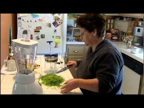 How to grow wheatgrass and make your own juice smoothies, without a juicer. Thanks for watching. Royalty-free music by Kevin MacLeod - Thank you! filmed with a Kodak Zi8 edited in Windows 7 with Windows Live Movie Maker