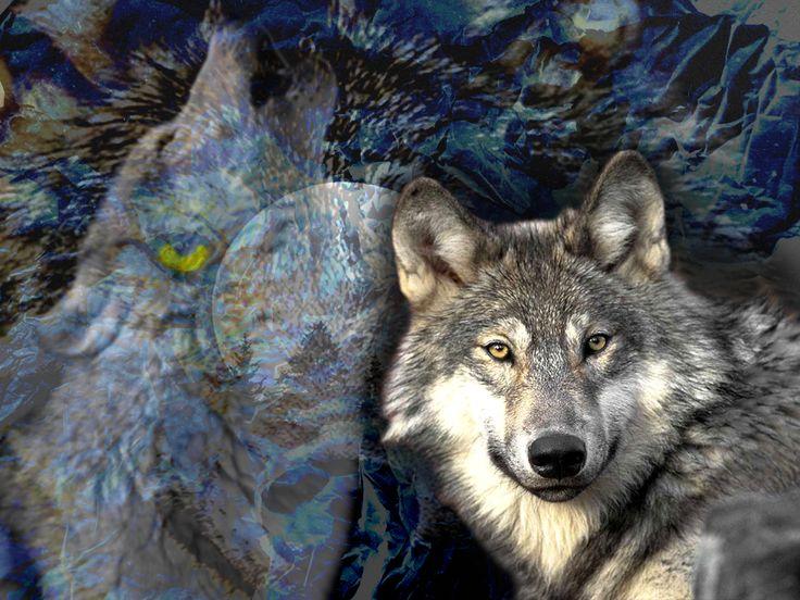 Free Wolf Spirit Wallpaper
