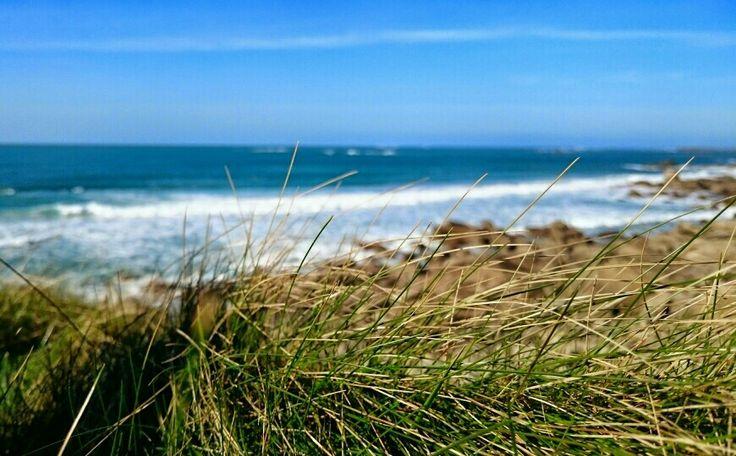 Le Gouerou,  plage bretonne...  Le bonheur, allongée dans l'herbe, les yeux tournés vers la mer...