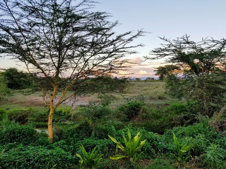 Back at our home away from home the sun is setting but we remain so grateful for the incredible team we worked with this week the lives that are forever changed by the water filters the children that have been loved on and the women we have been able to speak life and encouragement into. We have a rest day tomorrow before some more meetings at Lenkai Christian School and Hope Beyond Transitional Center so we position our hearts with purpose and intention for all that is still ahead knowing…