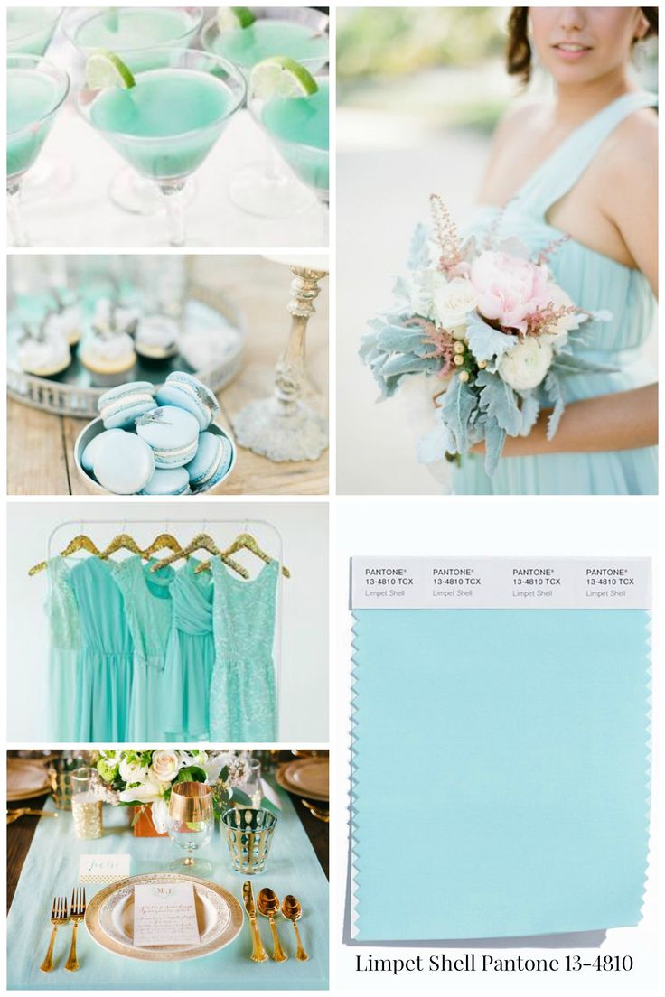 15 best modrá svatba images on Pinterest | Weddings, Color schemes ...