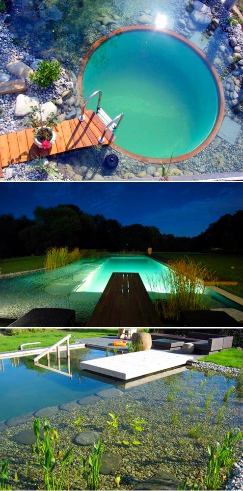 19 best convert pool to pond images on pinterest ponds for Swimming pool conversion