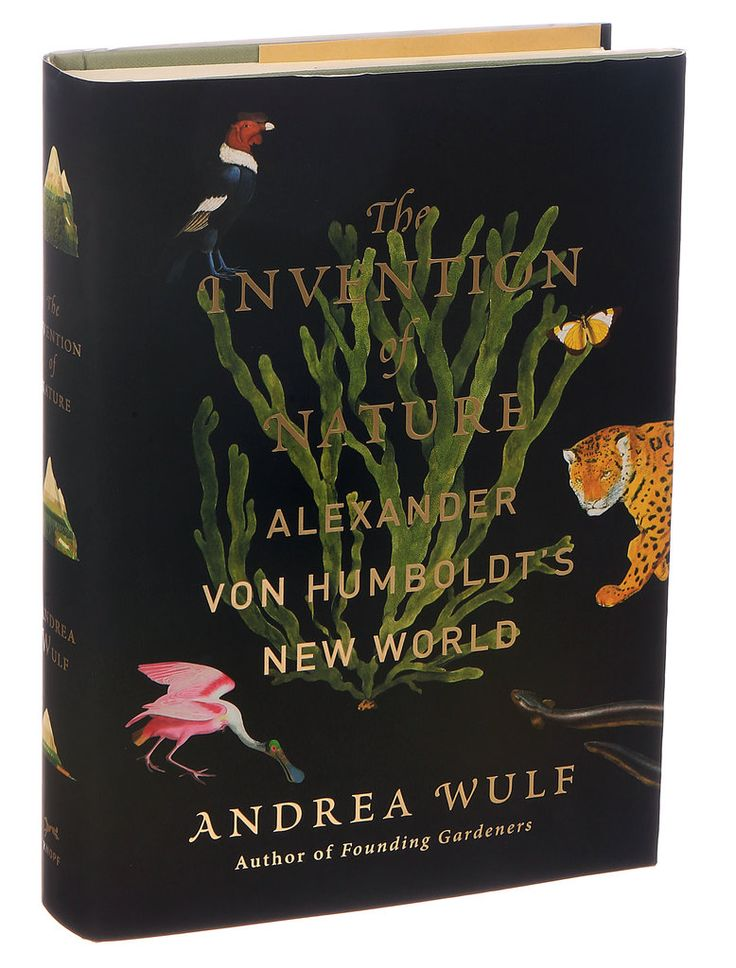 The Invention of Nature: Alexander von Humboldt's New World by Andrea Wulf (Photo: Alessandra Montalto/The New York Times)