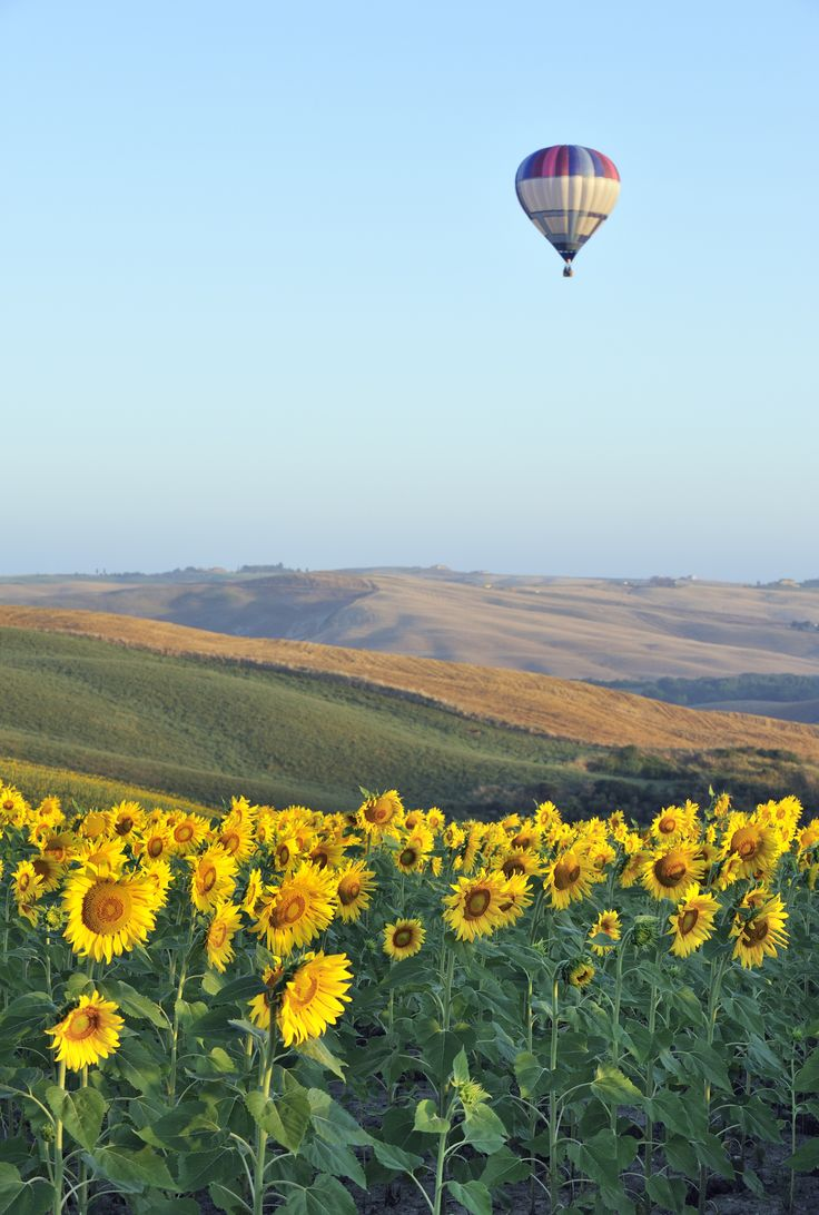Hot air balloon ride over Tuscany, Val D'orcia Siena, Italy