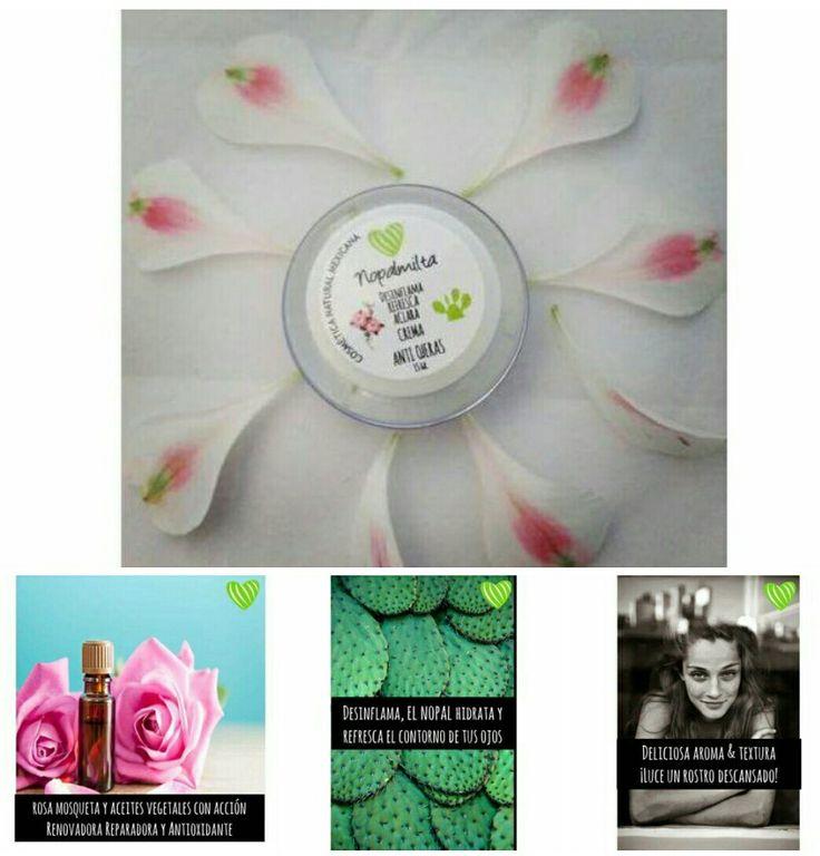 17 mejores ideas sobre Nopal Propiedades en Pinterest