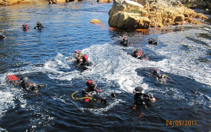 Palmiet river - underwater treasure hunt (2)