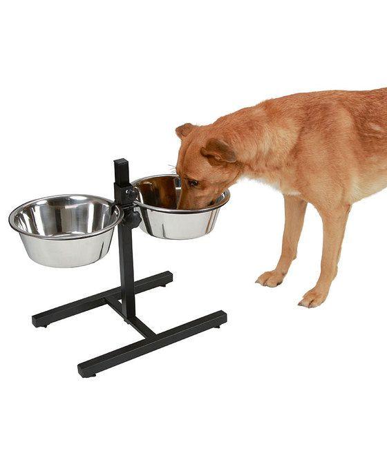 Kerbl Twin Voederbak  Deze H-standaard is ideaal voor grote honden. De twee voederbakken van RVS zijn in hoogte verstelbaar zo kan de hond altijd rechtop blijven tijdens het eten. Dit bevordert de spijsvertering.  EUR 37.95  Meer informatie