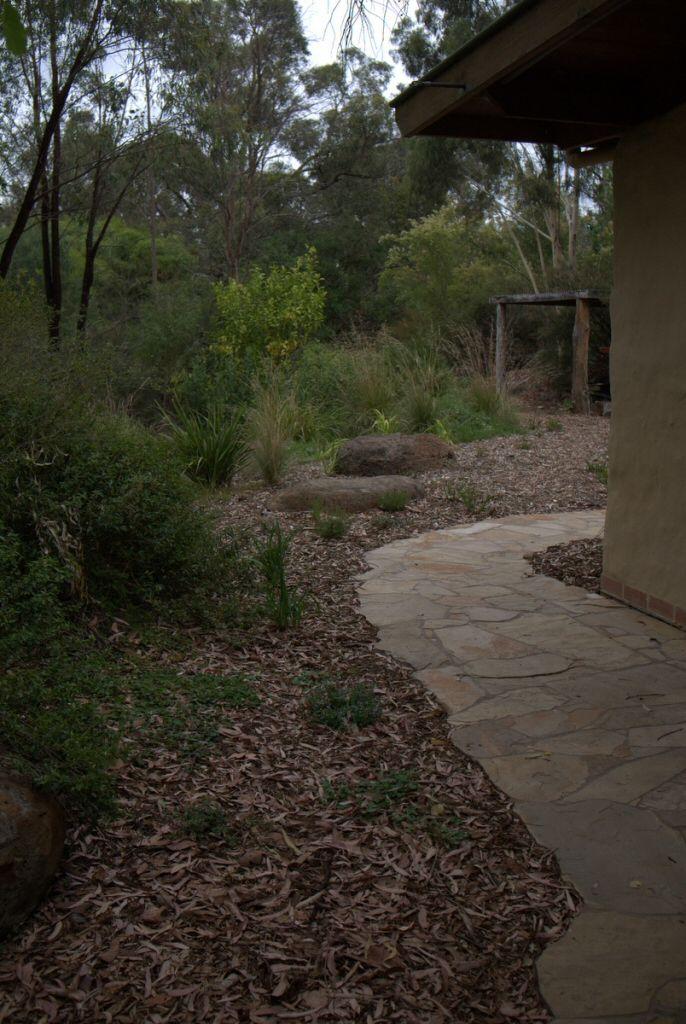 1459 best australian native gardens images on pinterest