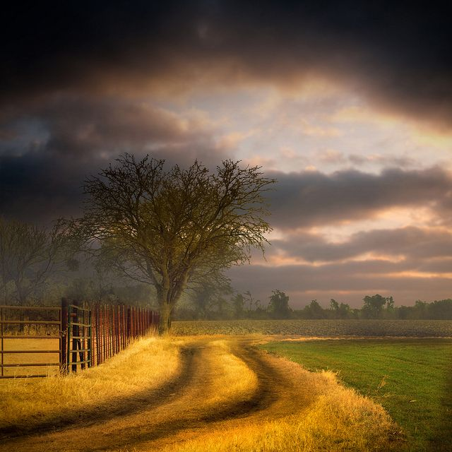 country morning, TexasPhotos, The Roads, Country Roads, Colors, Sunris, Storms Clouds, Landscapes, Country Mornings, Photography