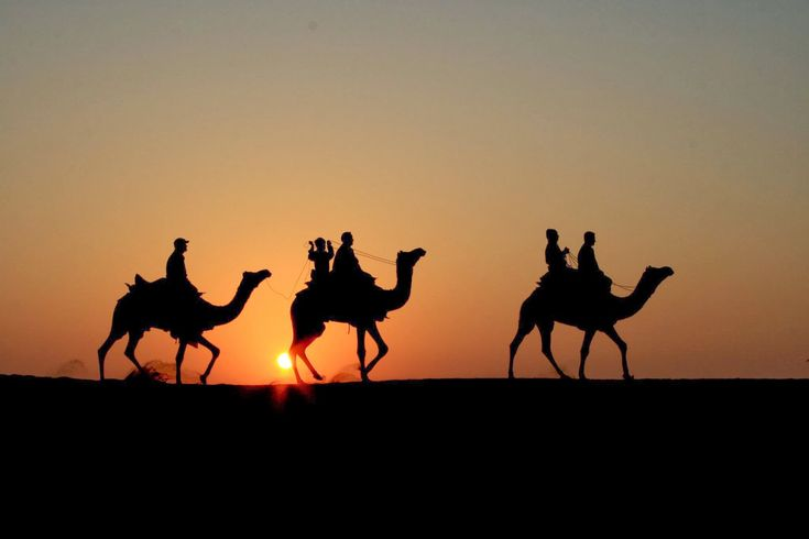 Rajasthan, is India's largest state by area. It is located on the western side of the country, where it comprises most of the wide and inhospitable Thar Desert and shares a border with Pakistan along the Sutlej-Indus river valley.