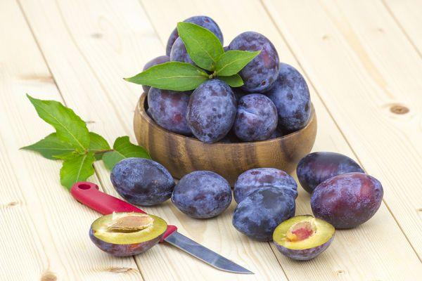 Зимой мы скучаем по лету. Нам не хватает тепла и фруктово-ягодного изобилия… Каждая баночка законсервированных плодов в февральский день — как находка. Поэтому сегодня, глядя на усыпанные сливами ветк…