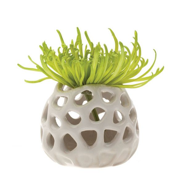 Gideon, Ceramic Flower Vase and Air Plant Holder by Chive
