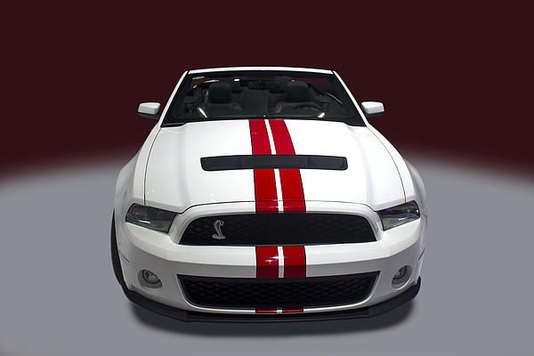ford shelby white