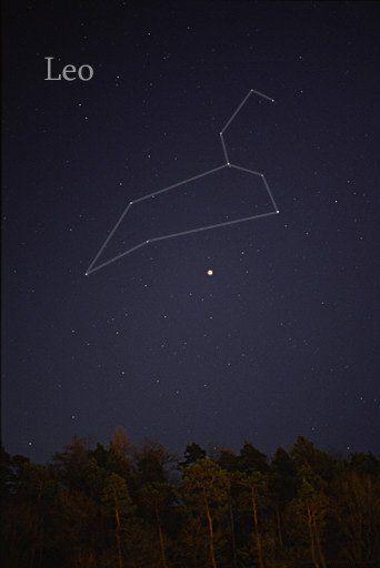 leo star nasa - photo #22