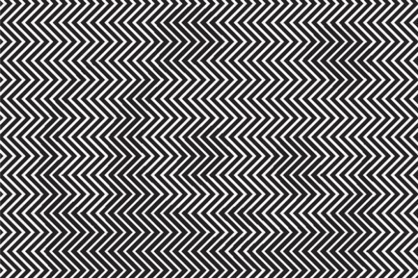 Can You Spot The Animal Hiding In This Optical Illusion? Most People Can't.
