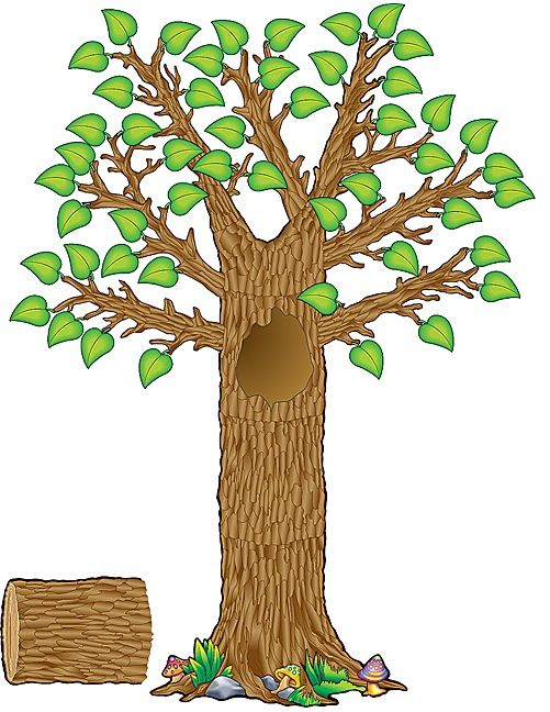 Love this for the classroom family tree.