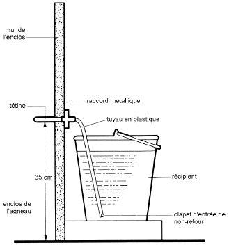On peut relier les tétines au récipient à l'aide d'une longueur de tuyau. C'est probablement la méthode la plus souple, la plus fiable et la plus économique pour distribuer le lait aux agneaux à l'intérieur de leur loge.
