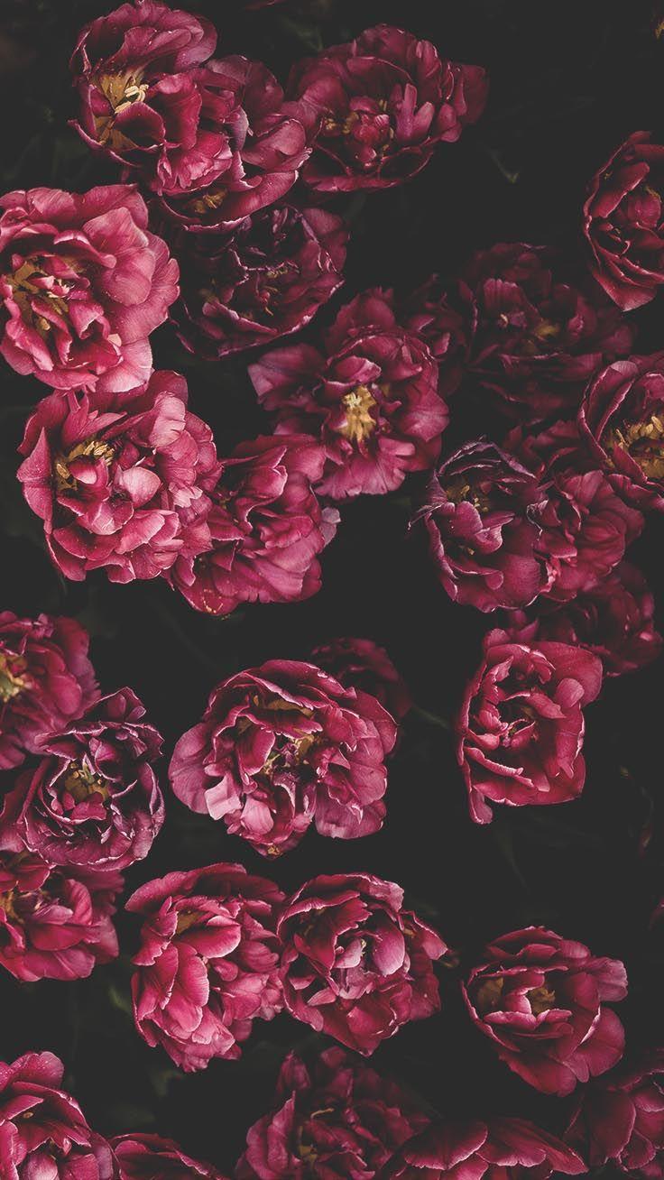 29 Romantic Roses Iphone X Wallpapers Preppy Wallpapers Floral Print Wallpaper Floral Wallpaper Iphone Preppy Wallpaper