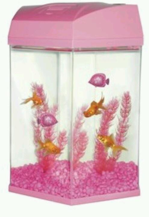 Best 25 fish tank gravel ideas on pinterest funny for Pink fish tank