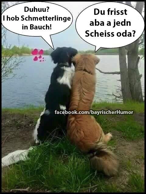 1000 bilder zu bayerisch auf pinterest rot - Lustige bilder fa rs wochenende ...
