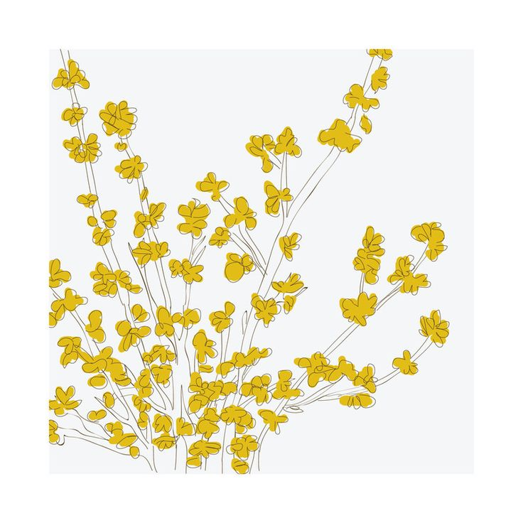 Forsythia Wall Art Prints by Vanessa Wyler   Minted